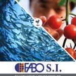 ICO_brochure FABO_web_stampa_Pagina_1