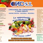 ICO_fabo A4 agrolimentare_Pagina_1